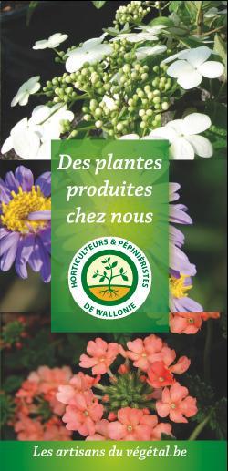 Flyer des Artisans du Végétal – Les artisans du vegetal